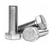 Stainless Hex Cap Screws