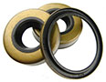 Oil, Lip, and Shaft Seals